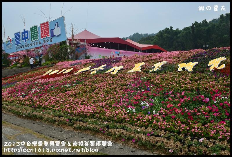 2013中台灣農業博覽會&南投茶葉博覽會DSC_3346