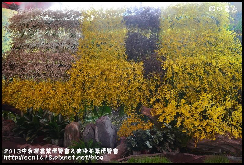 2013中台灣農業博覽會&南投茶葉博覽會DSC_3351