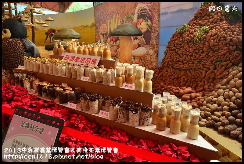 2013中台灣農業博覽會&南投茶葉博覽會DSC_3354