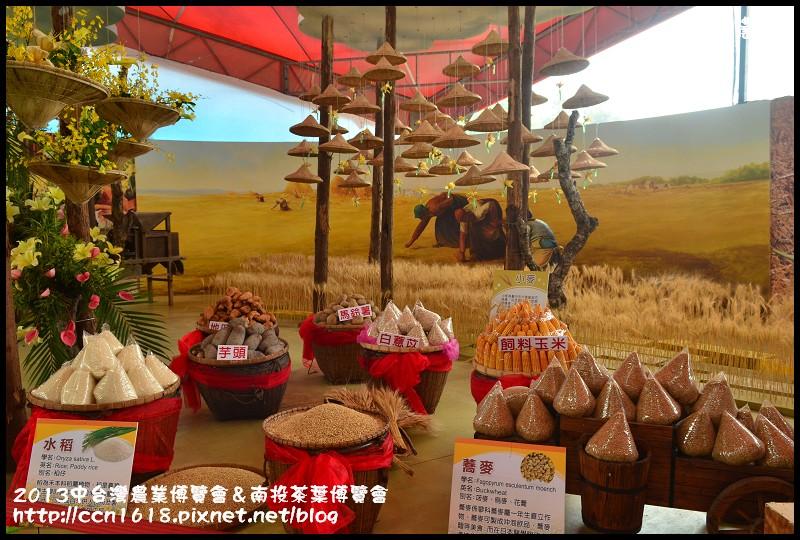 2013中台灣農業博覽會&南投茶葉博覽會DSC_3356