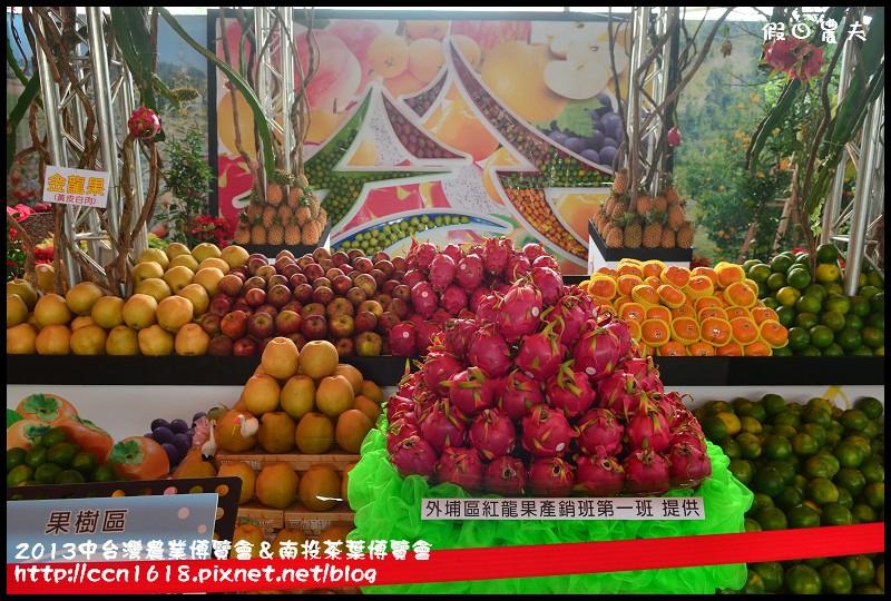 2013中台灣農業博覽會&南投茶葉博覽會DSC_3357