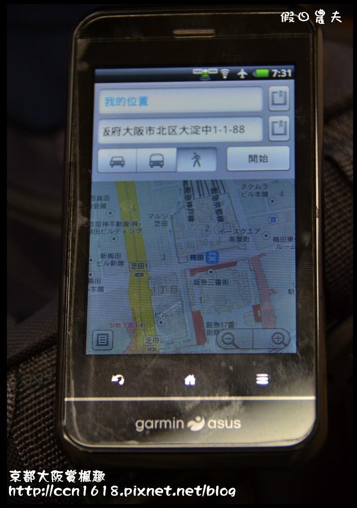 京都大阪賞楓趣DSC_6242