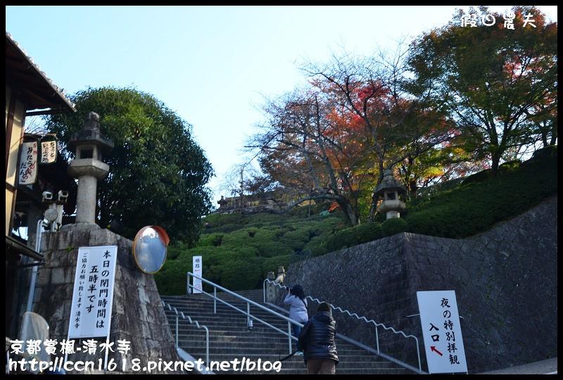 京都賞楓-清水寺DSC_2795