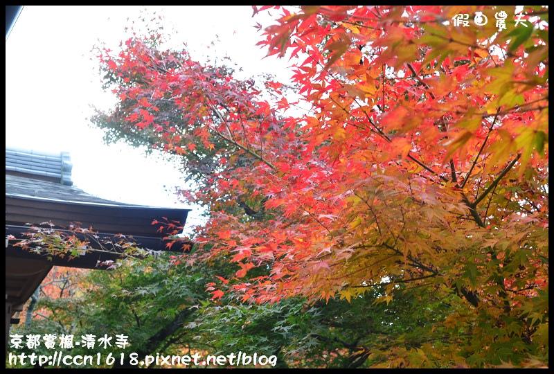 京都賞楓-清水寺DSC_2833