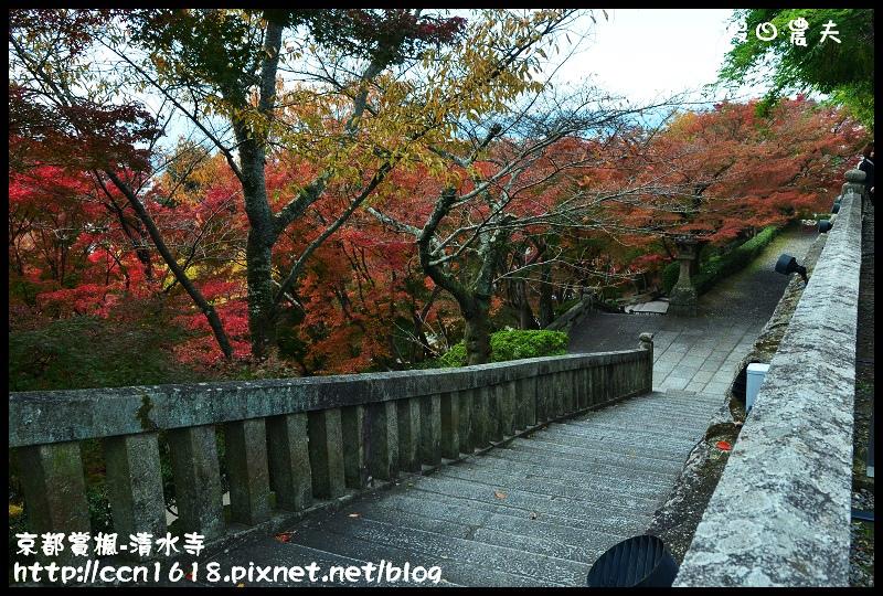京都賞楓-清水寺DSC_2838