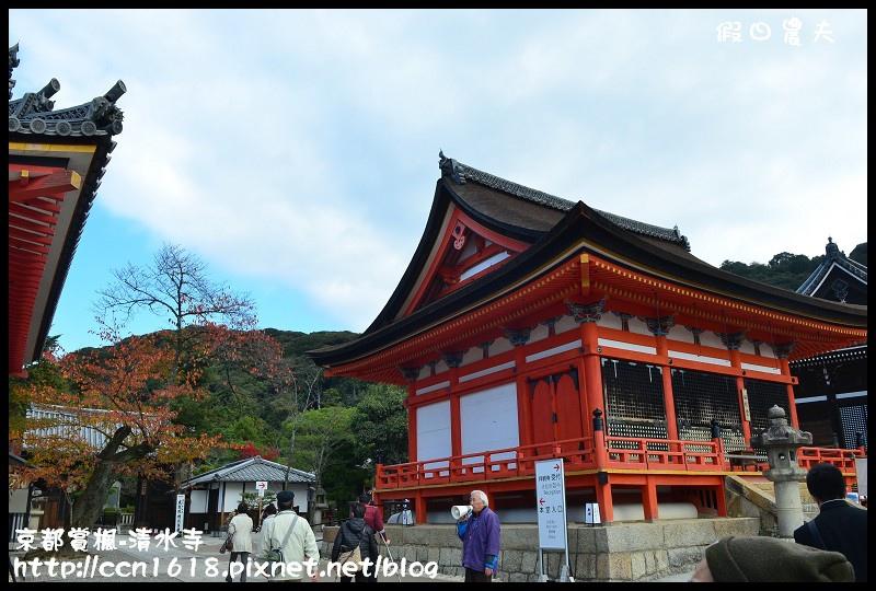 京都賞楓-清水寺DSC_2841