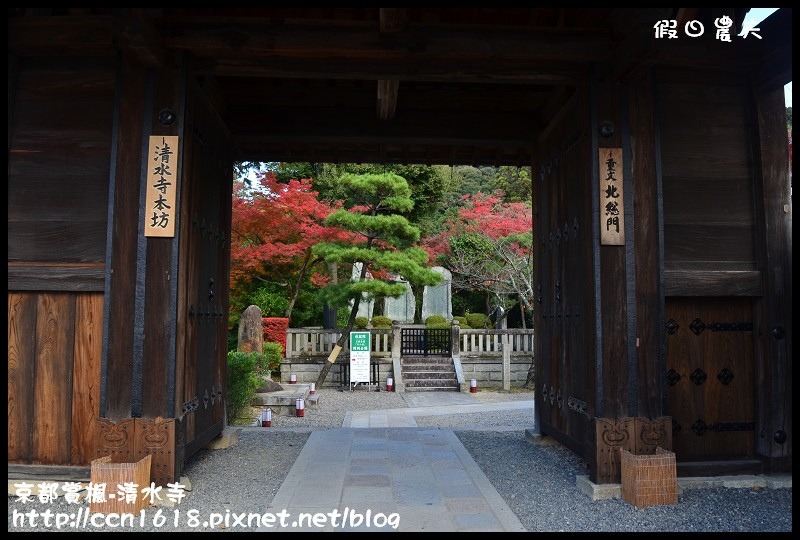 京都賞楓-清水寺DSC_2843