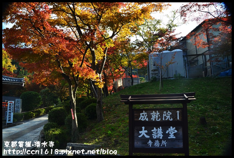 京都賞楓-清水寺DSC_2888