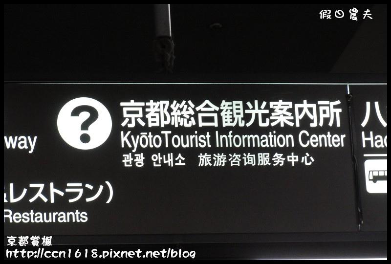 京都賞楓DSC02946