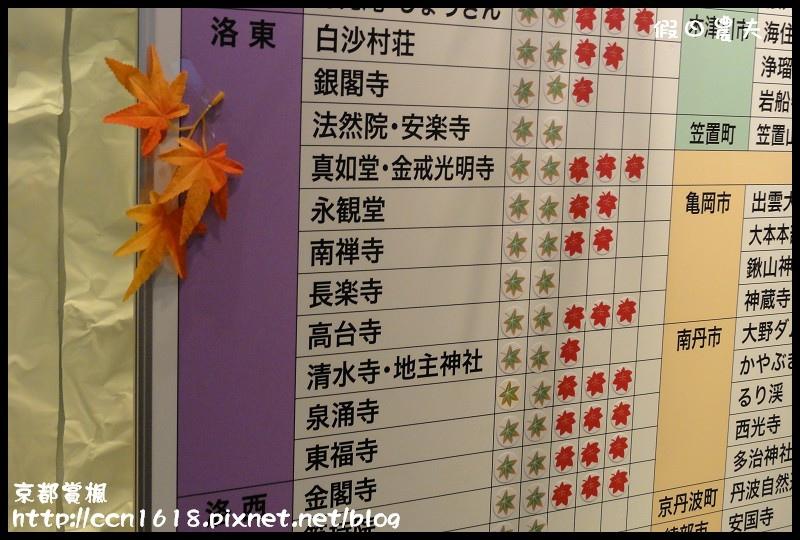 京都賞楓DSC02951