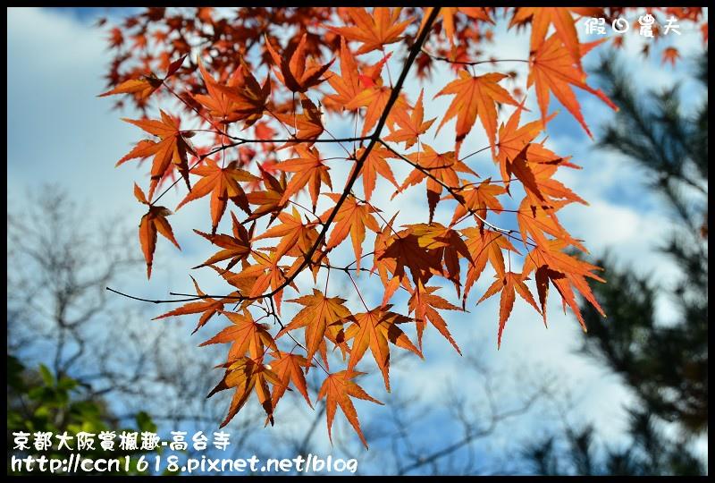 京都大阪賞楓趣-高台寺DSC_3004