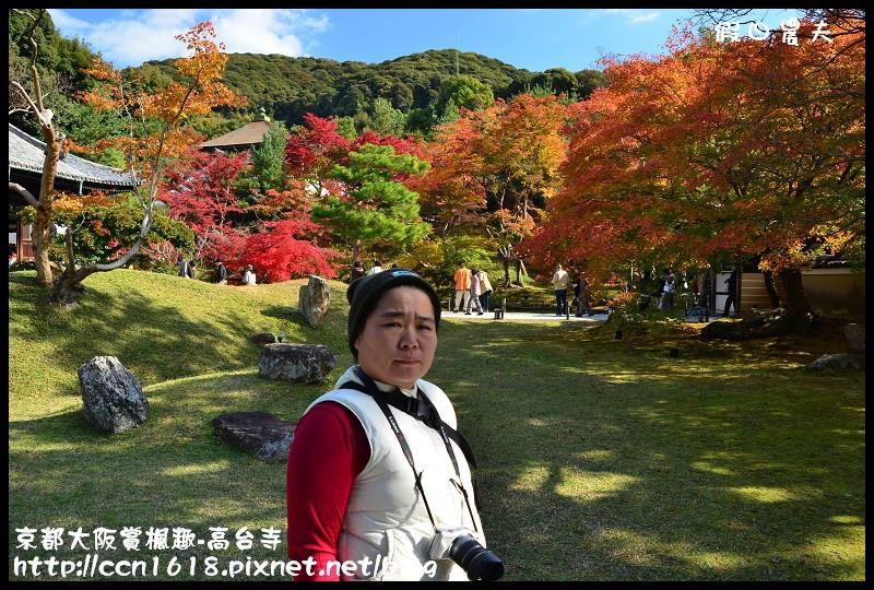 京都大阪賞楓趣-高台寺DSC_3048