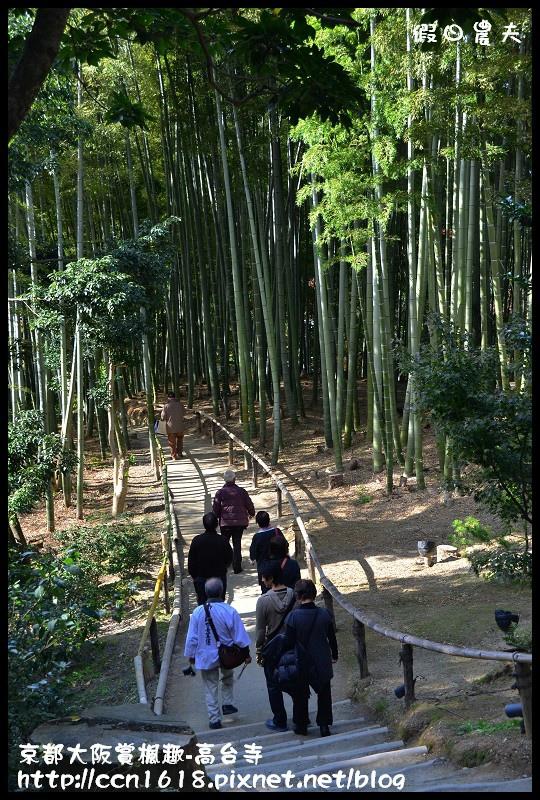 京都大阪賞楓趣-高台寺DSC_3082