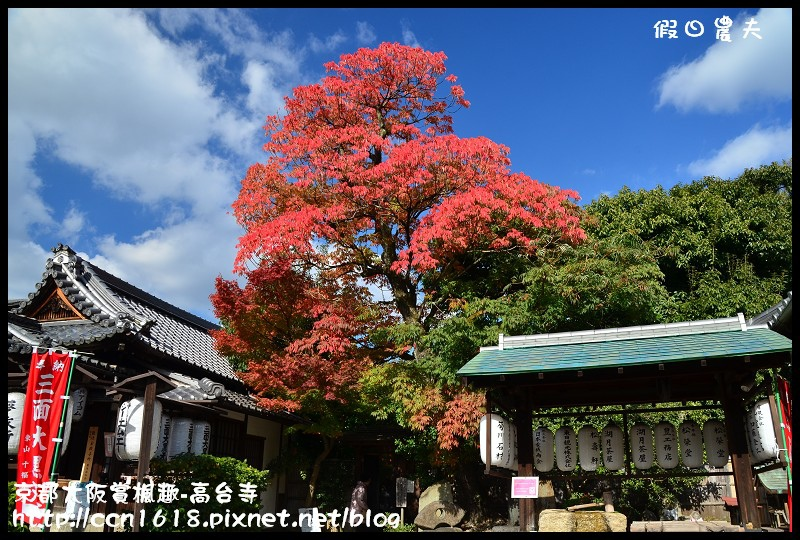 京都大阪賞楓趣-高台寺DSC_3118