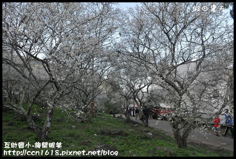 互助國小-梅開眼笑DSC_0645