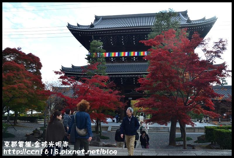 京都賞楓-金戒光明寺DSC_3168