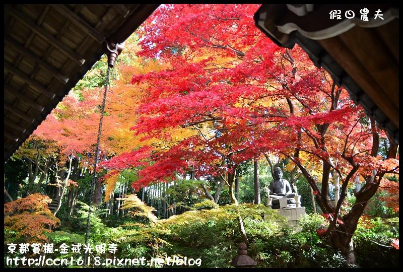 京都賞楓-金戒光明寺DSC_3214