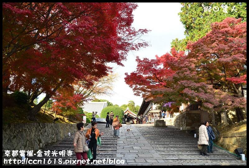 京都賞楓-金戒光明寺DSC_3255