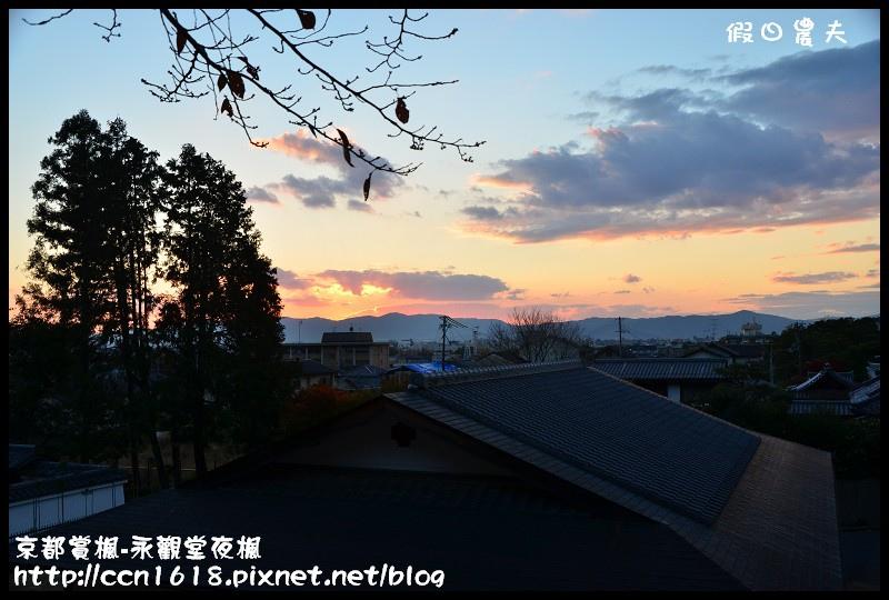 京都賞楓-永觀堂夜楓DSC_3566