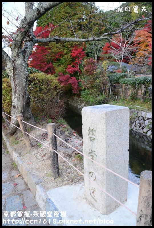京都賞楓-永觀堂夜楓DSC_3591