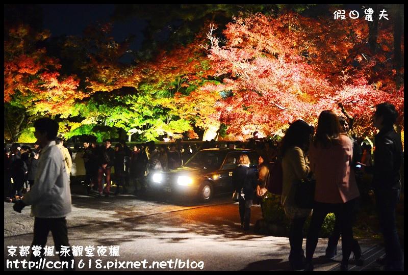 京都賞楓-永觀堂夜楓DSC_3639
