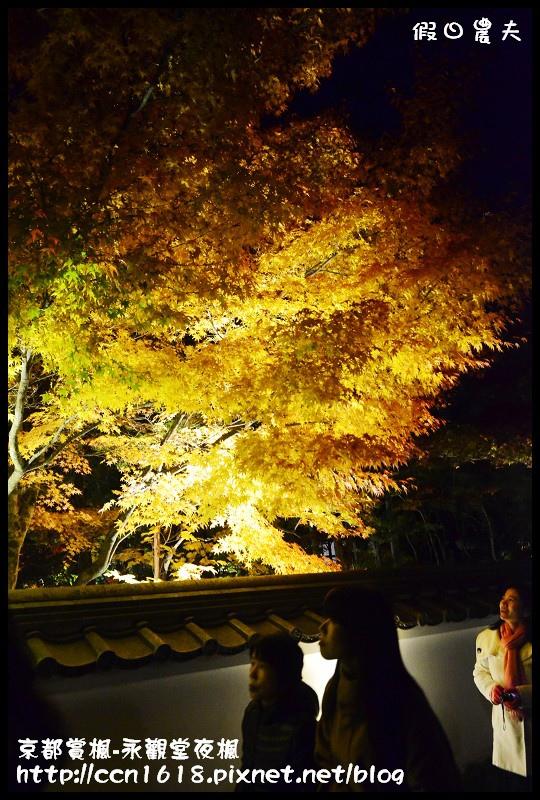 京都賞楓-永觀堂夜楓DSC_3645