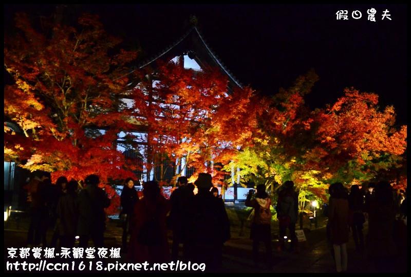 京都賞楓-永觀堂夜楓DSC_3655