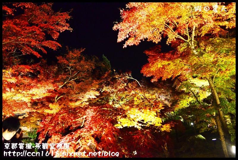 京都賞楓-永觀堂夜楓DSC_3658