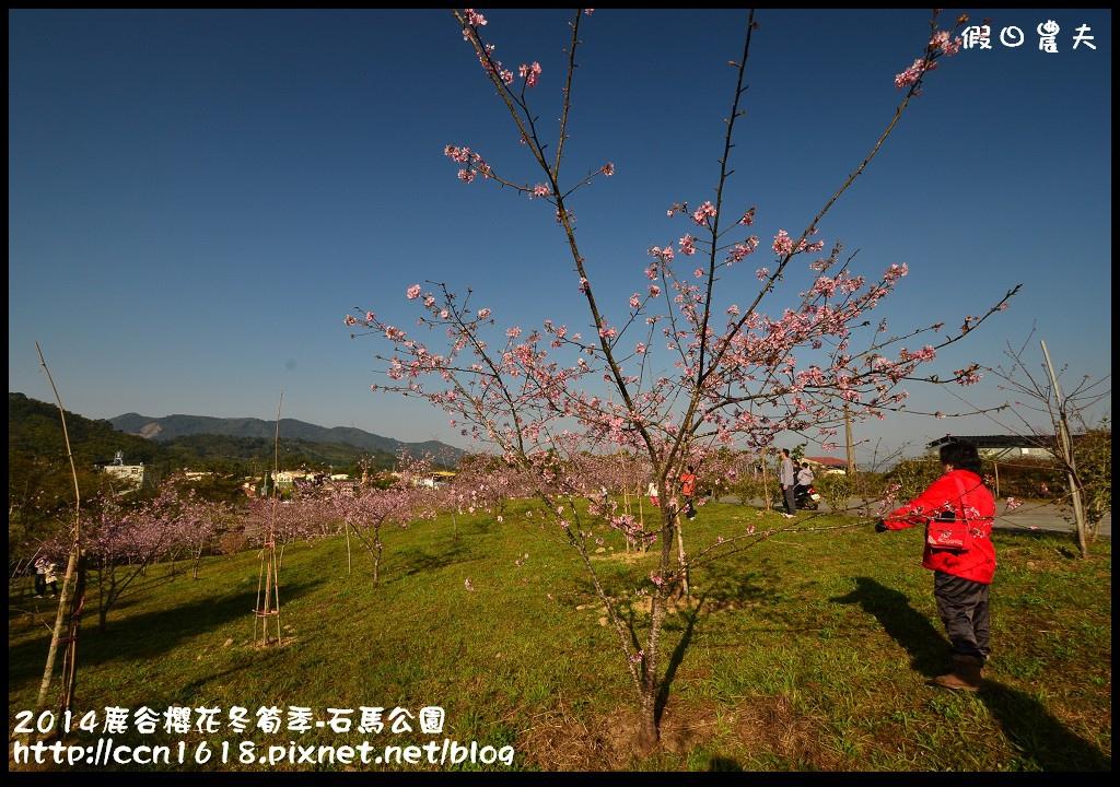 2014鹿谷櫻花冬筍季-石馬公園DSC_1670
