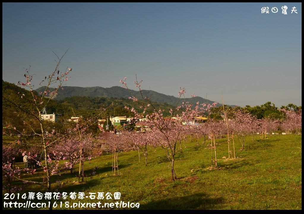 2014鹿谷櫻花冬筍季-石馬公園DSC_1668