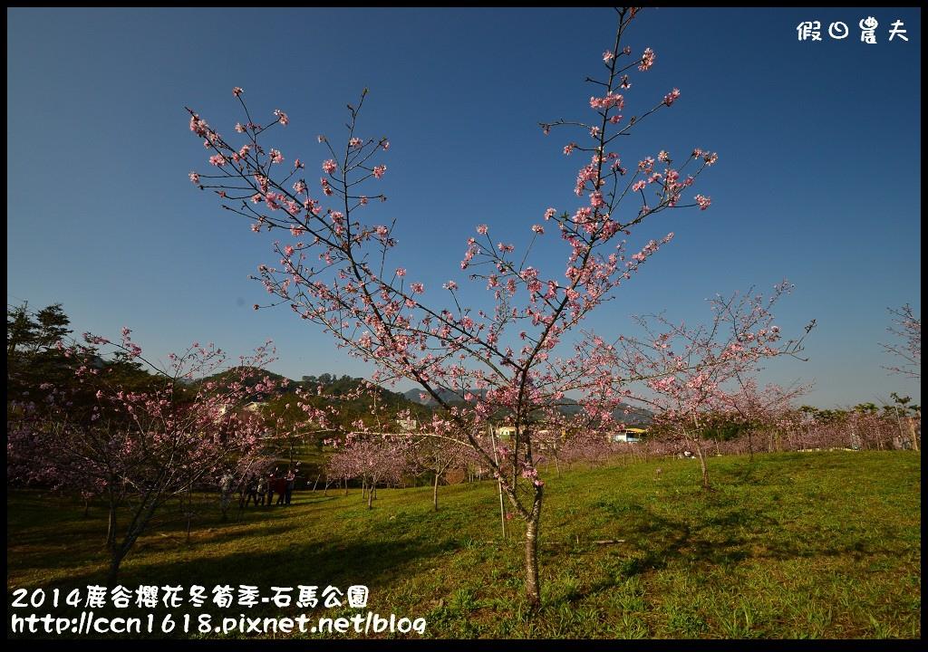 2014鹿谷櫻花冬筍季-石馬公園DSC_1672