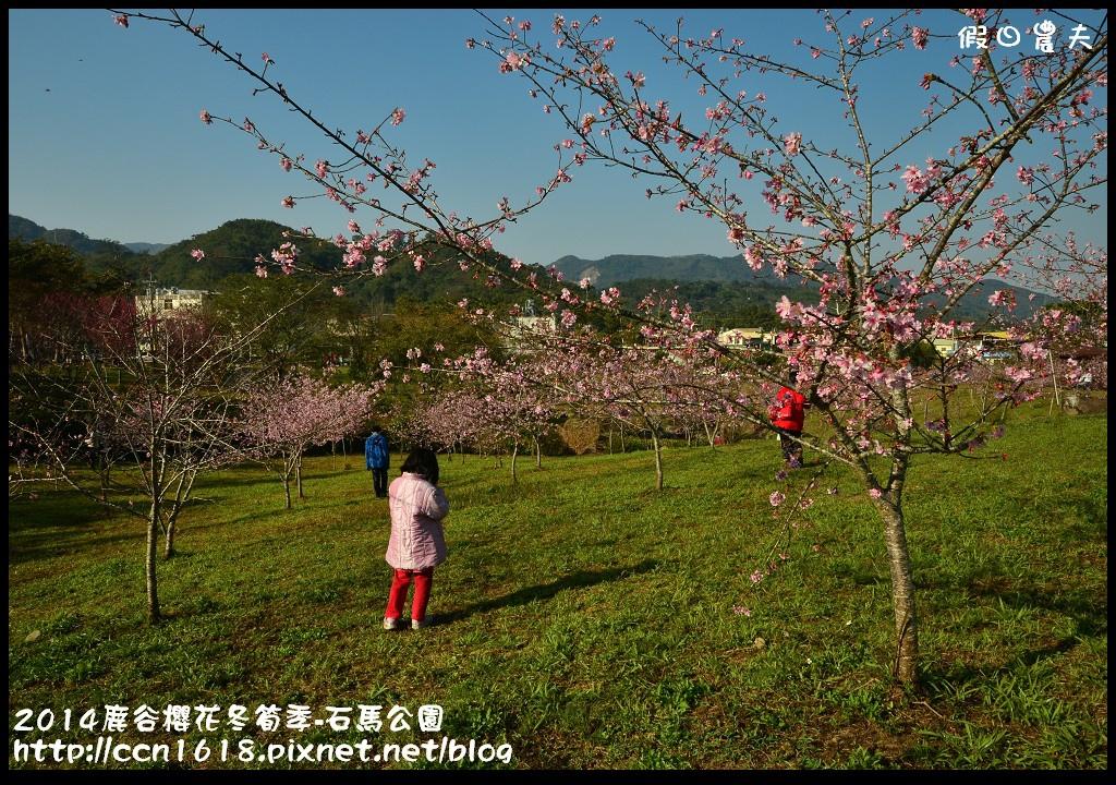 2014鹿谷櫻花冬筍季-石馬公園DSC_1676
