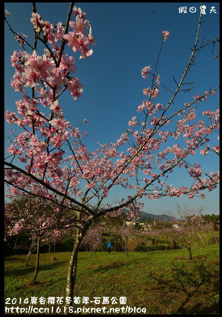 2014鹿谷櫻花冬筍季-石馬公園DSC_1678
