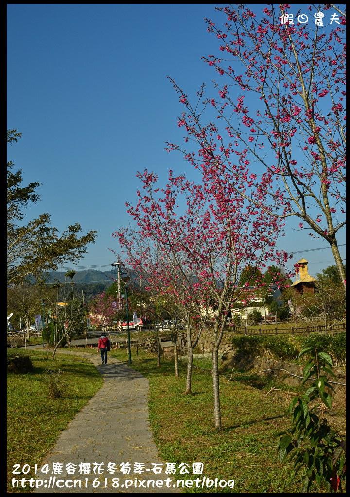 2014鹿谷櫻花冬筍季-石馬公園DSC_1684