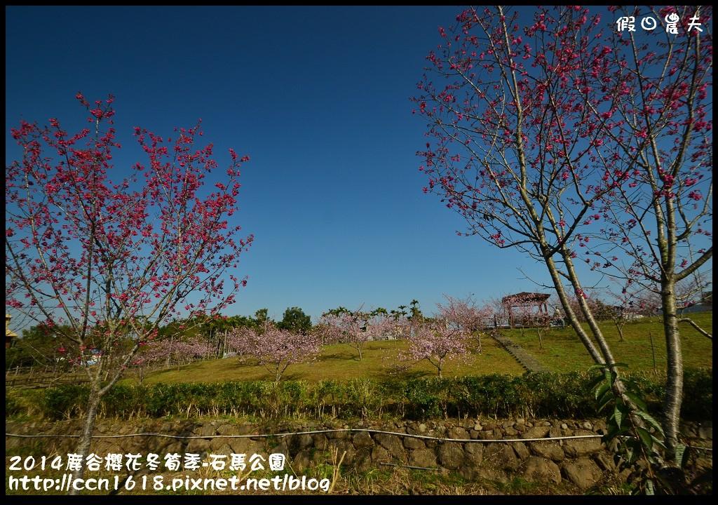 2014鹿谷櫻花冬筍季-石馬公園DSC_1686