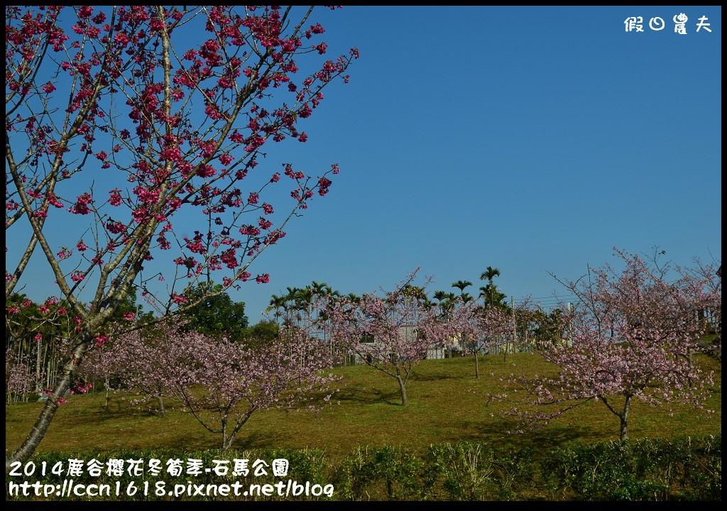 2014鹿谷櫻花冬筍季-石馬公園DSC_1691