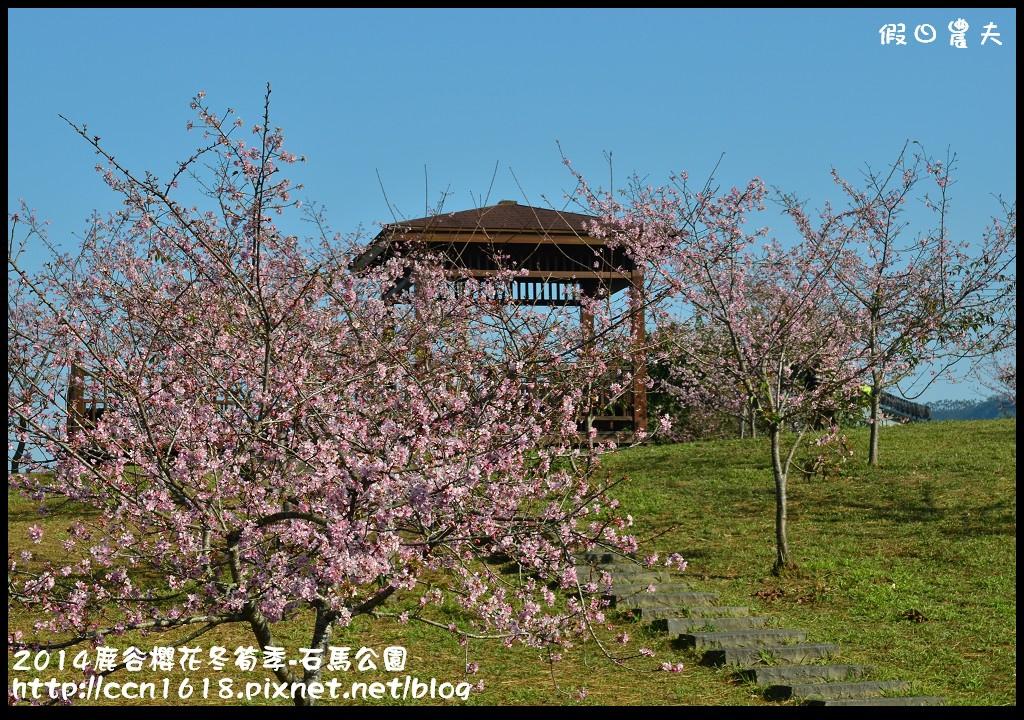 2014鹿谷櫻花冬筍季-石馬公園DSC_1693