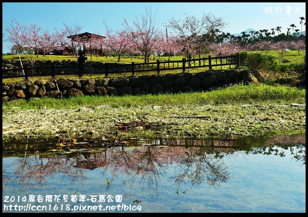 2014鹿谷櫻花冬筍季-石馬公園DSC_1697