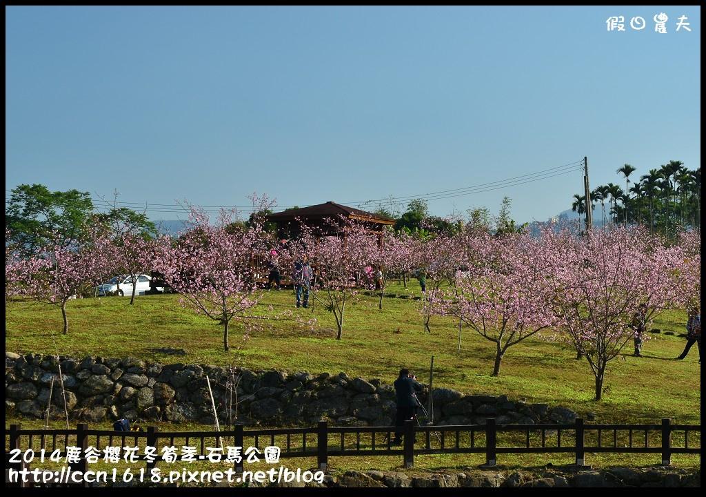 2014鹿谷櫻花冬筍季-石馬公園DSC_1700