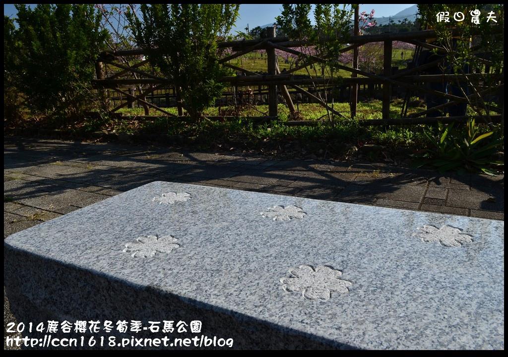 2014鹿谷櫻花冬筍季-石馬公園DSC_1702