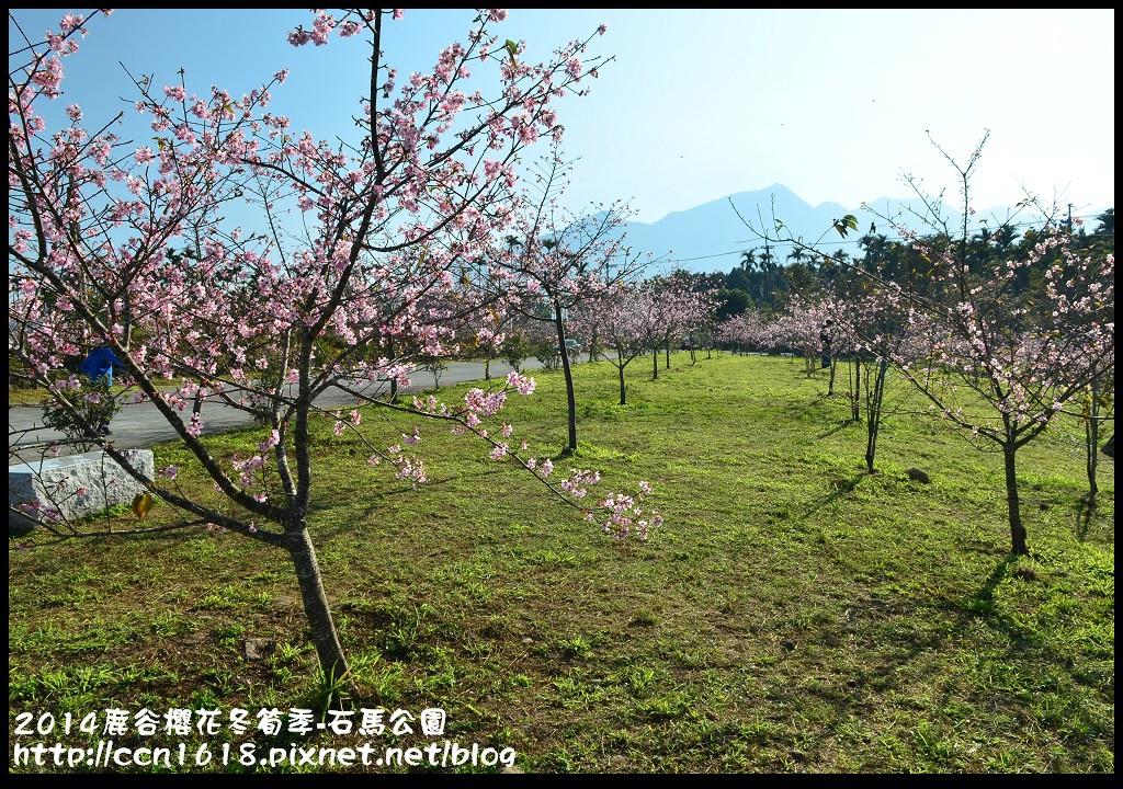 2014鹿谷櫻花冬筍季-石馬公園DSC_1714