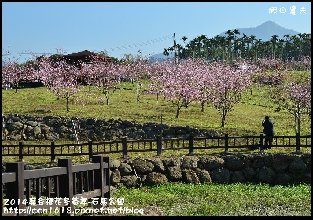 2014鹿谷櫻花冬筍季-石馬公園DSC_1724