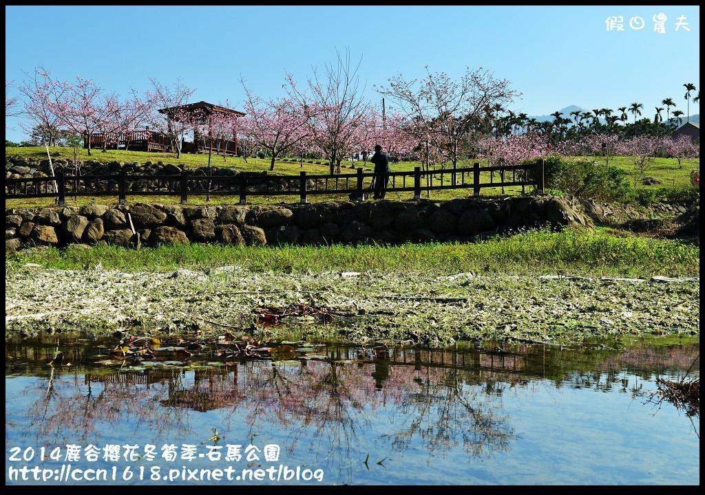 2014鹿谷櫻花冬筍季-石馬公園DSC_1727