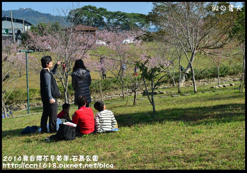 2014鹿谷櫻花冬筍季-石馬公園DSC_1758