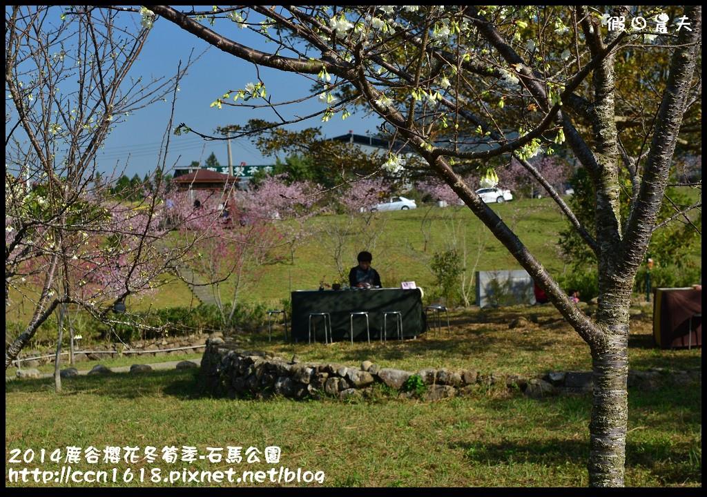 2014鹿谷櫻花冬筍季-石馬公園DSC_1783