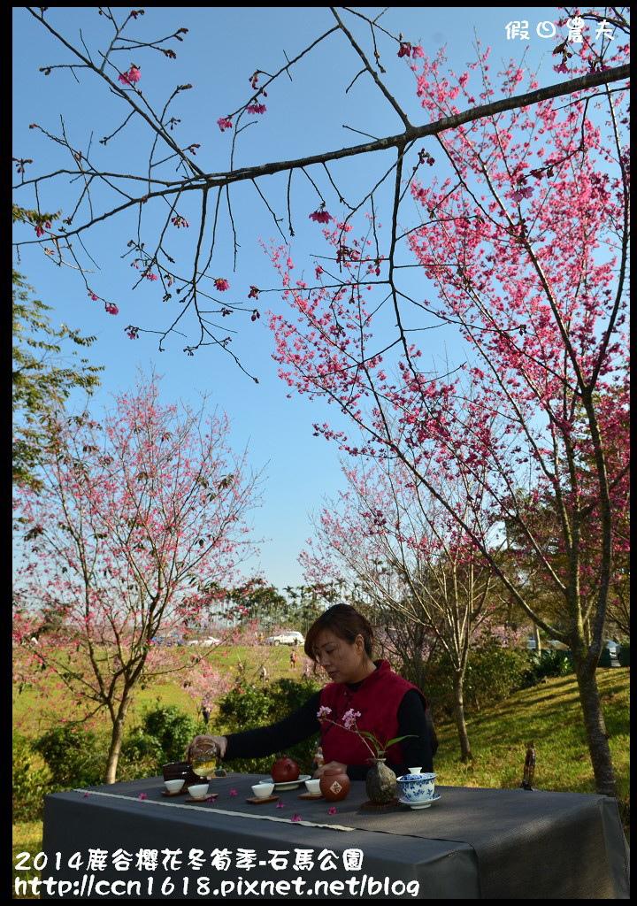 2014鹿谷櫻花冬筍季-石馬公園DSC_1804