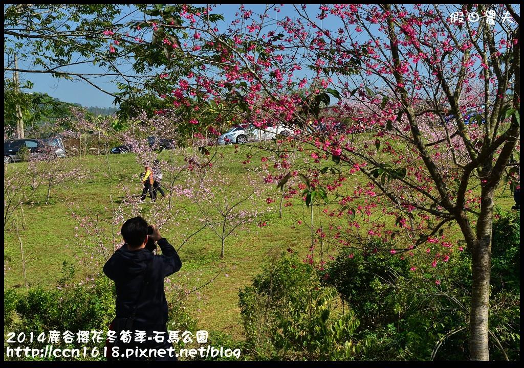 2014鹿谷櫻花冬筍季-石馬公園DSC_1811