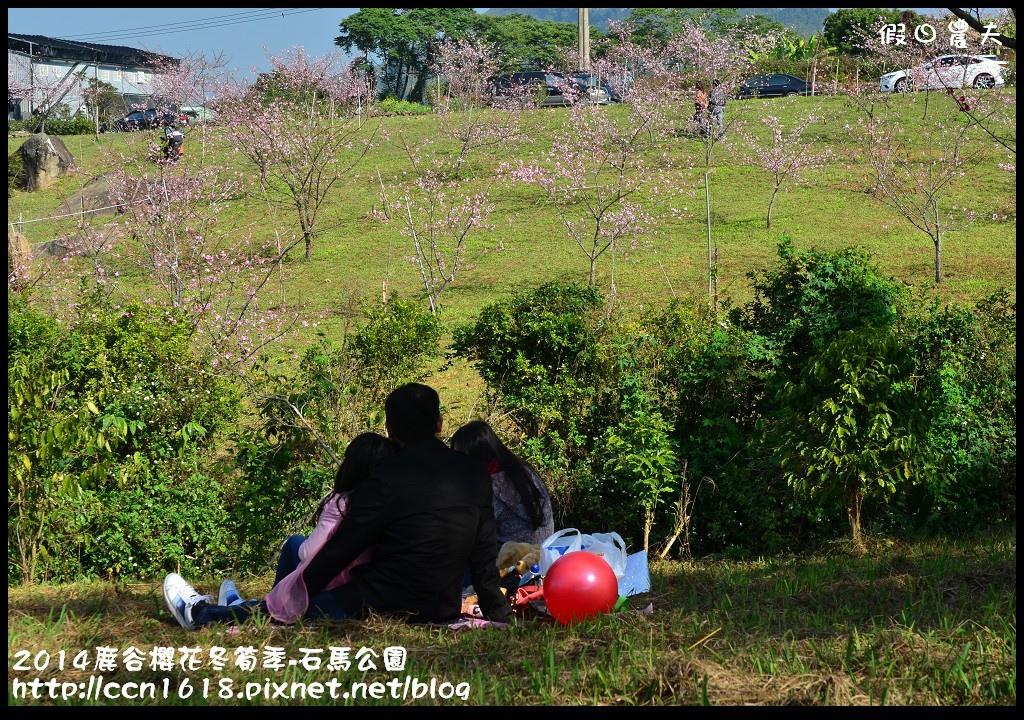 2014鹿谷櫻花冬筍季-石馬公園DSC_1814