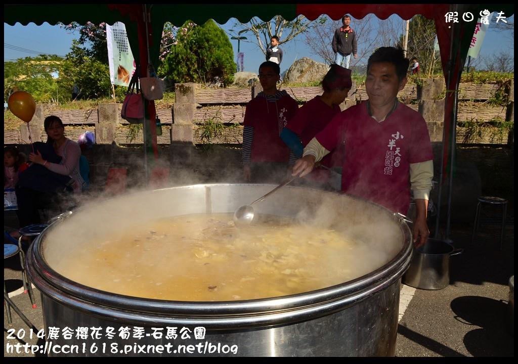 2014鹿谷櫻花冬筍季-石馬公園DSC_1846
