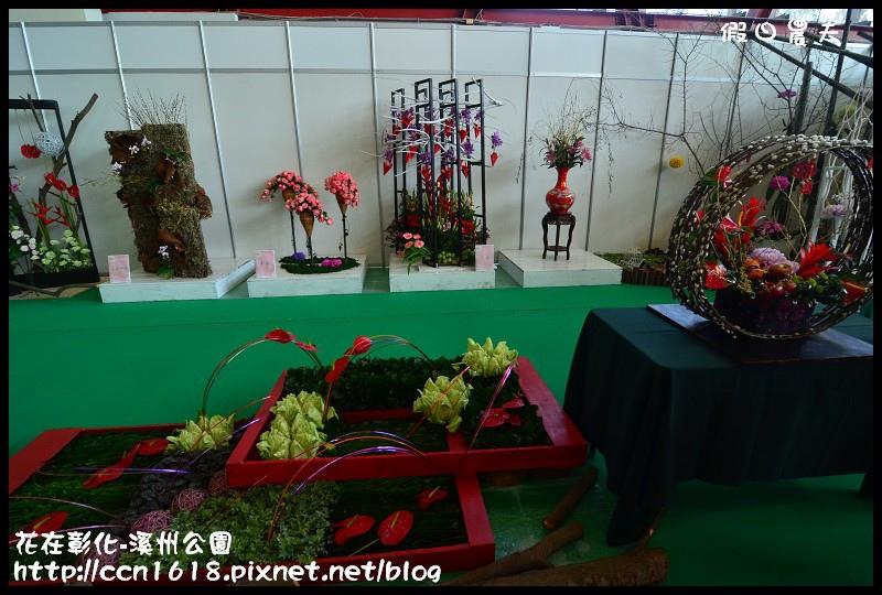花在彰化-溪州公園DSC_3164